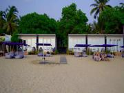SALE Operational Resort Business on the Beach in Agonda,  South Goa.